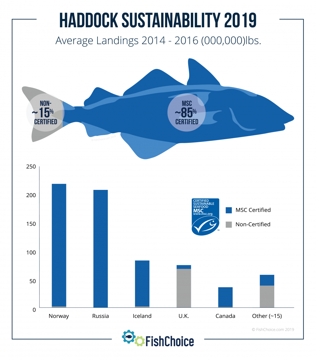 Haddock Sustainability